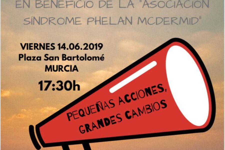 Mercadillo Solidario en Murcia